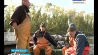 Ловля семги северная двина