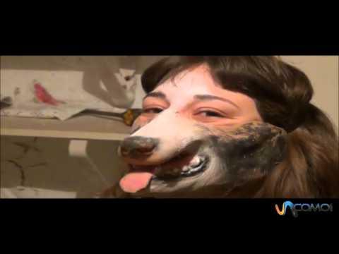 Cómo disfrazarse de perro
