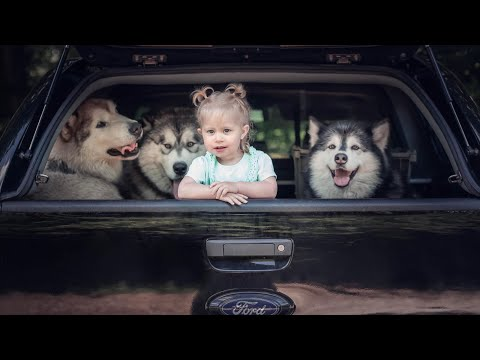 We Built A MONSTER! Meet Our New Malamute Mobile….(plus your chance to win)