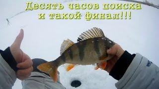 Ловля окуня зимой на водохранилищах