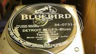 Detroit Blues - Tampa Red (Bluebird)