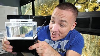 THE SMALLEST AQUARIUM IN THE WORLD!! (REAL) | The King of DIY