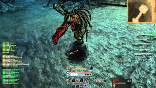 Blade & Soul PvE Assassin play video (LV36)