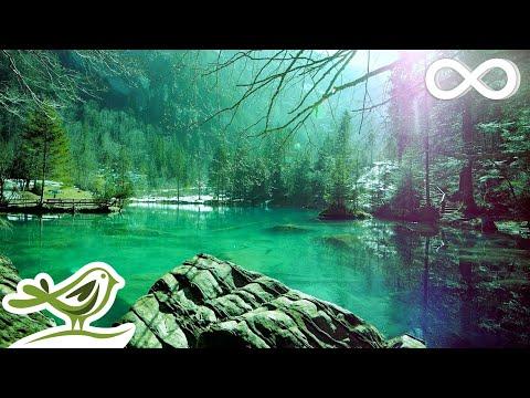 Relaxing Sleep Music • Deep Sleeping Music, Relaxing Music, Stress Relief, Meditation Music (Flying)