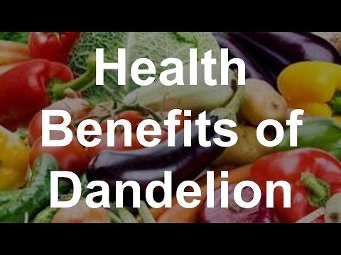 Video Health Benefits of Dandelion