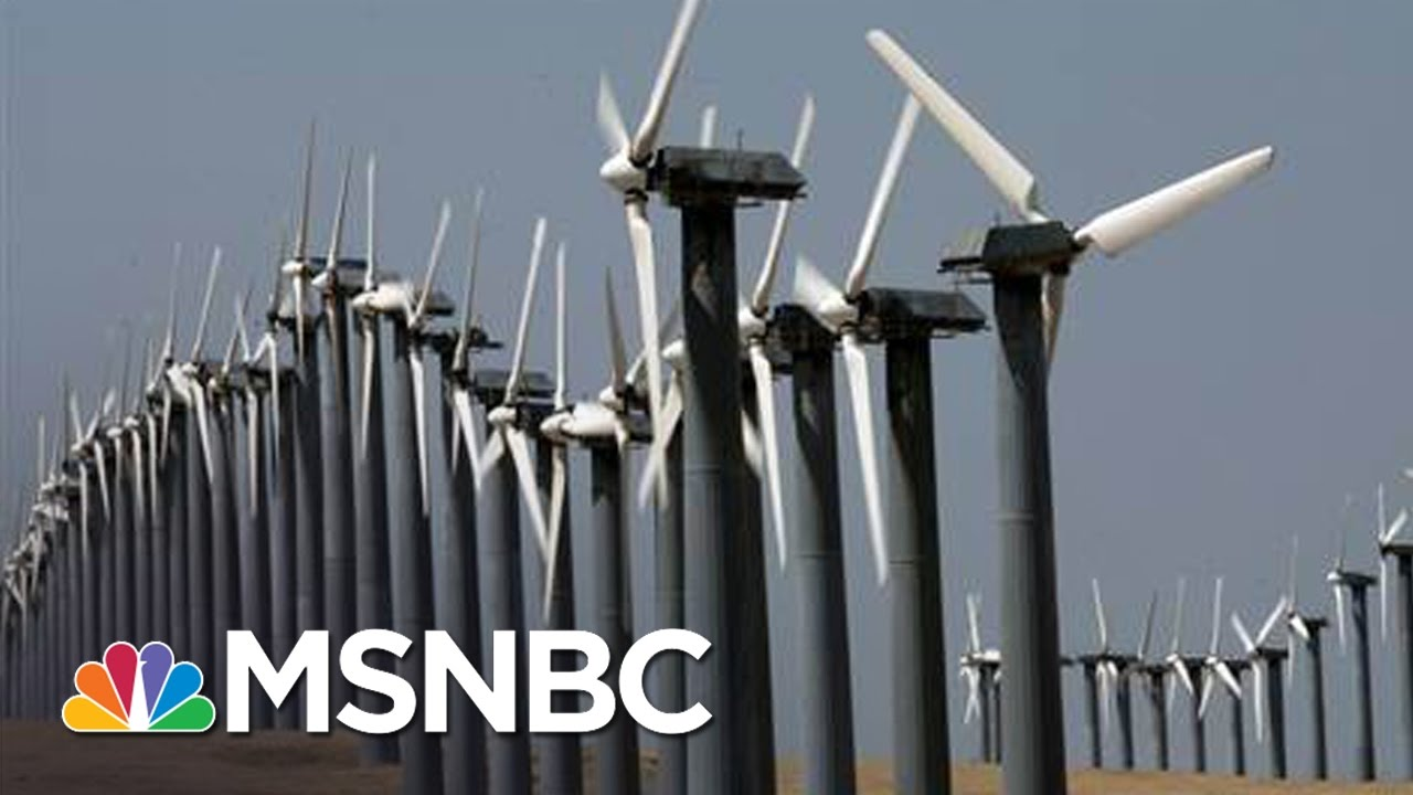 Donald Trump Transition Sets Targets  On Energy Officials | Andrea Mitchell | MSNBC thumbnail
