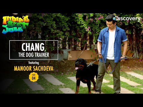 Chang, The Dog Trainer   India's Best Jobs - YouTube
