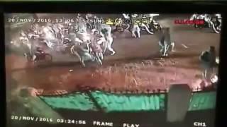 Penyerangan Geng Motor CCTV  Cipayung Jakarta Timur JAKARTA SIAGA