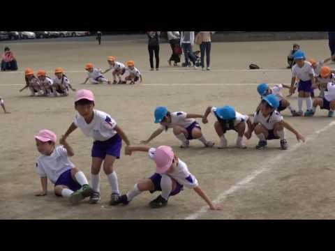 手賀の丘幼稚園・保育園 2016 運動会 年長組 組体操