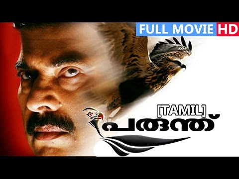 Tamil Full Movie | Parunthu | Ft. Mammootty, Rai Lakshmi, Jagathi Sreekumar