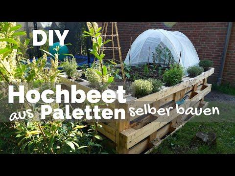 Hochbeet aus Paletten selber bauen   Anlegen - Befüllen - Bepflanzen   Garten DIY Anleitung