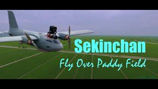 Sekinchan Fly Over Paddy Field | Cinematic FPV Plane