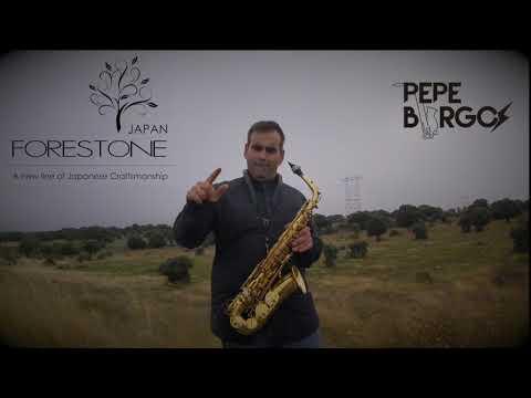 Without you Avicii - Pepe Burgos Sax Cover