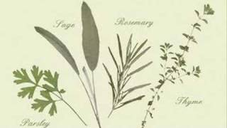 Angelo Branduardi - Scarborough Fair