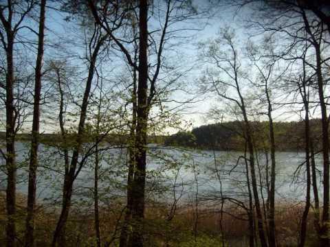 Piotr Czajkowski - Jezioro Łabędzie (Walc)