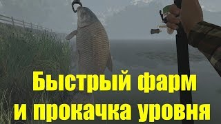 Fishing planet озеро лоун стар ловля трофеев
