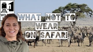 What Not to Wear on an African Safari