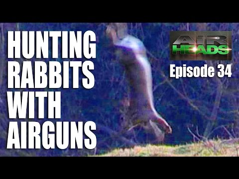 Hunting Rabbits with Airguns – AirHeads, Episode 34