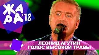 Леонид Агутин  -  Голос высокой травы  (ЖАРА В БАКУ Live, 2018)