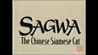 Sagwa The Chinese Siamese Cat | Intro | 2003 | PBS Kids