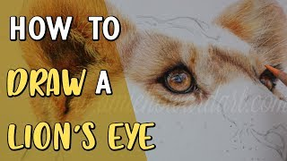 HOW TO DRAW A LION'S EYE | Coloured Pencil Drawing Tutorial