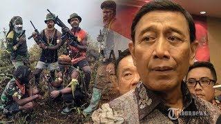 Mengetahui Kegiatan dan Keberadaan KKB, Wiranto: Kami Tahu Kekuatan Mereka, Tinggal Selesaikan Saja