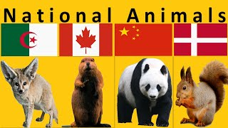 National Animals of all Countries
