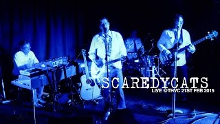preview picture of video 'SCAREDYCATS - NOWHERE FAST - 21-2-15 - THVC LIVE'