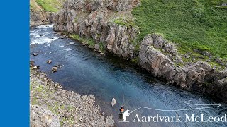 Fly Fishing the Hafralonsa River in Iceland 2019