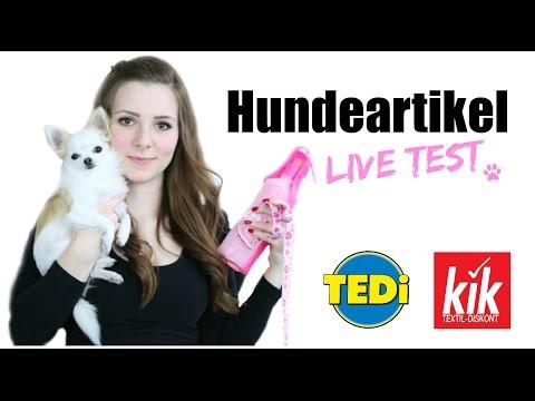 KIK & TEDI MINI HUNDE HAUL + LIVE TEST 🐶⚾️