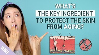 Korean Celebrity Beauty Secrets to Look 10 Years Younger | 3 Key Products to Protect Skin from Aging