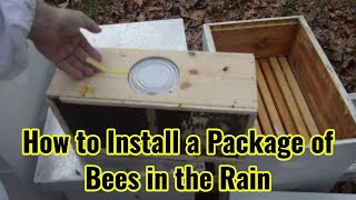 Installing Package Bees In The Rain