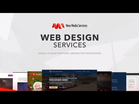 Web Design Services: Visually Fluid And Functional Web Designs for Your Business
