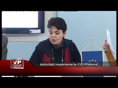 Activităţi importante la CCI Prahova