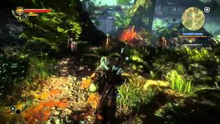 The Witcher 2 Assassins of Kings-Chapter 1-Mystic River