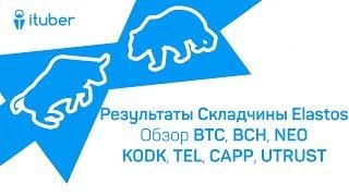 Результаты Складчины Elastos. Обзор BitCoin BTC, BitCoinCash BCH, NEO, Kodak KODK, TelCoin TEL, CAPP