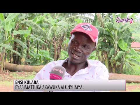 Wuuno amaze emyaka kkumi n'e mukyala we nga tamanyi nti alina akawuka