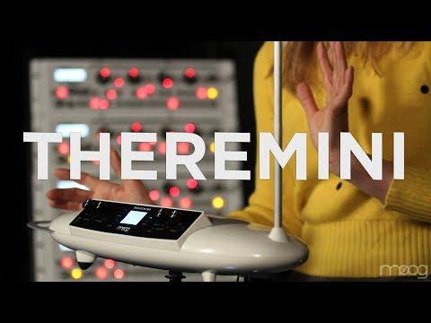 Theremini | Dorit Chrysler