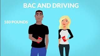 BLOOD ALCOHOL CONTENT & DRIVING: What You Need To Know [2018]