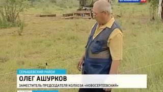 Электропастух OLLI для КРС