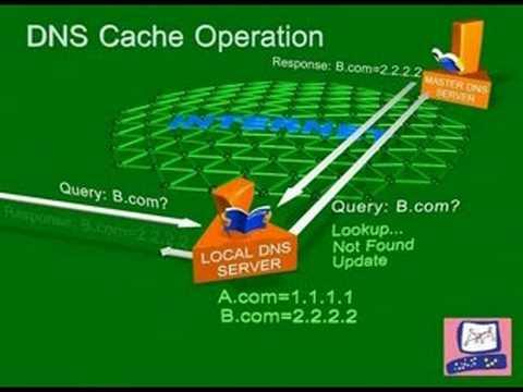DNS 緩存器