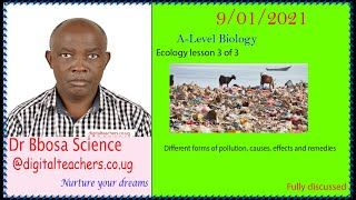 Ecology lesson 3 of 3