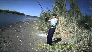 Пруды для рыбалки в ростове области
