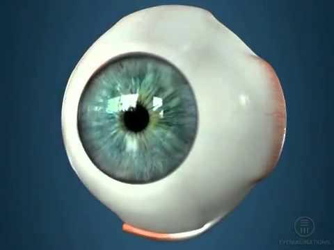 Восстановление зрения на аппарате
