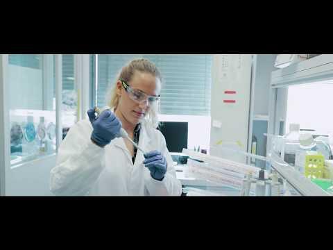Allergia paraziták kezelésével népi gyógyszerekkel