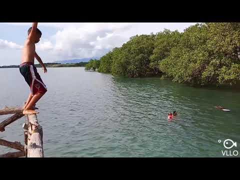 Tanjay Mangrove Forest Boardwalk, Tanjay City, Negros Oriental (06.15.19)