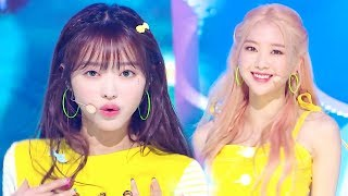 OH MY GIRL   BUNGEE (Fall In Love) [SBS Inkigayo Ep 1014]