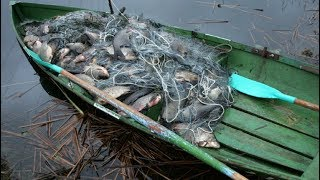 АнтиБрак 2018. Рейды рыбнадзора.Борьба с браконьерами.