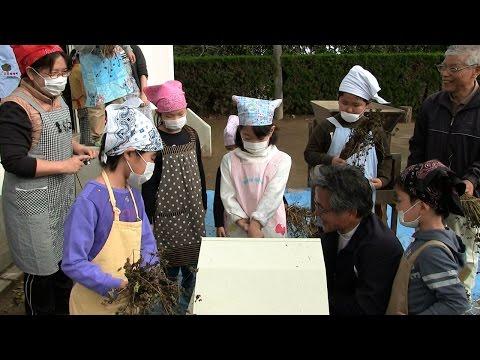 種子島の学校活動:南界小学校古市家塾そば打ち体験やってみよう!