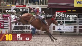 Rodeo 101: Saddle Bronc